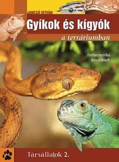 Gyíkok és kígyók a terráriumban